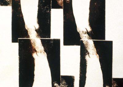 Brazo, 1989 (detalle)